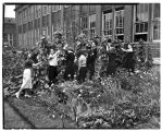 Students working in school garden at Ballard High, September 1938