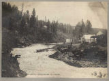 Miners at work on banks of Pine Creek, ca. 1899