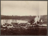 Lumber loading at Port Hadlock, Washington, 1900