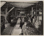 Men working at picking table at Issaquah mine, ca. 1913