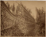 Columbia & Puget Sound Railroad May Creek trestle, 1897