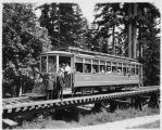 Seattle trolley car on trestle, Woodland Park, ca. 1910