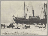 "Steamer ""Jeanie"" at Nome, May 25, 1901"