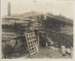 Old prospector in front of his driftwood house, Nome, ca. 1905