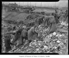 Men scavenging in garbage dump, Seattle, 1937