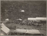 People and pack animals on the Chilkoot Trail, April 21, 1898