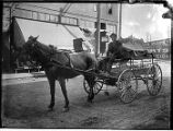 Horse-drawn wagon and driver for Zarembo Mineral Springs Co, Seattle, ca. 1906