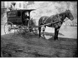 Horse-drawn delivery wagon for Rainier Laundry, Seattle, ca. 1906