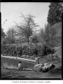 Washington Park Arboretum showing a man photographing a boy on a rock, Seattle, 1957
