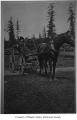 Elizabeth Sawyer and Louise Dubigk in a horse and buggy, probably in Maple Valley, n.d.