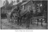 Nils Lagesson and children transporting produce, probably in Maple Valley, ca. 1915