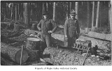 Art Eklund and Nils Lagesson cutting wood with a drag saw, probably in Maple Valley, ca. 1915