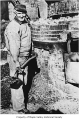 Fred Masini working at a brick kiln, Taylor, n.d.
