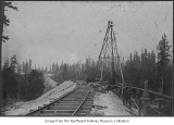 Trestle construction using steam donkey and aerial tram, ca. 1900