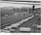 Green chain at Snoqualmie Falls Lumber Company, near Snoqualmie, ca. 1950