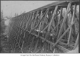 Newly constructed timber trestle, ca. 1900