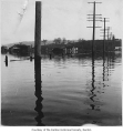 Flooded road and homes in Renton, 1926
