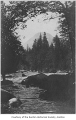 Cedar River and a view of Mount Rainier, possibly in Renton, n.d.