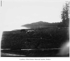 Horses grazing at the shores of Lake Washington, Renton, 1890-1891