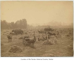 Haying on Smithers farm, Renton, n.d.