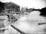 Unidentified railroad unloading logs at log dump, possibly Deep River, Washington, 1903