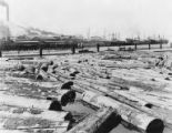 Log pond with ships at dock in background,  Bloedel-Donovan Lumber Mills, probably Bellingham, 1926