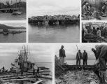 Collage of photographs of the fishing industry, Alaska, n.d.