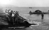 Fishermen seining for salmon, Sand Island, Columbia River, Oregon