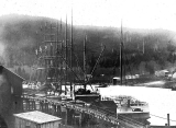 Schooners at the Lewis Mill dock, Raymond, Washington, April 22, 1908
