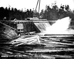 Dumping logs into mill pond, unidentified location, probably Washington, n.d.