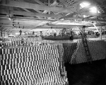Canned salmon in fish cannery, Pacific Coast