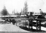 Mason County Central Railroad used for logging out of Shelton, Washington, 1886