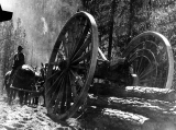Hauling logs with big wheels, probably Pacific Northwest, n.d.