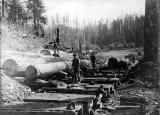 Crew loading logs onto railroad cars, Deep River, Washington, 1903