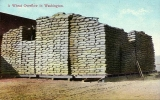 Sacks of wheat, eastern Washington, n.d.