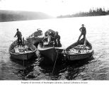 Five boats with salmon catch being towed, vicinity of the lower Columbia River, ca. 1900