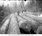 Stack of felled logs next to railroad tracks with donkey engine in background, ca. 1903