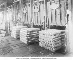Salmon cannery interior showing canned salmon loaded into retorts for cooking, Washington, ca. 1928