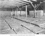 Calmon cannery warehouse interior showing rows of canned salmon cooling, washington, ca. 1928