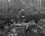 Close view of man standing near large tree stumps and felled trees, vicinity of Bloedel, Stewart...