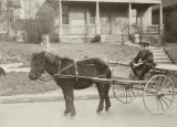 Morris Abrashin (Brashen) sitting in cart pulled by pony, Seattle, Washington, ca. 1915-1920
