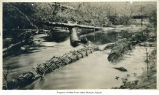 Photo of basketry fishing trap in river, Auburn area, ca. 1923