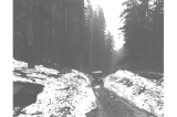 Automobile on snowy stretch of road near Snoqualmie Pass, Washington, July 4, 1916