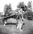 Horse-drawn grass cutter, Kinnear Park, Seattle, Washington, September 1897