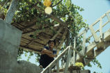 Girl on stairs under grape arbor