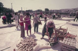 Anita Jester, Christopher and Geoffrey Landreau buying potatoes at a farmers' market