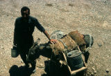 Donkey and man carrying canisters of water