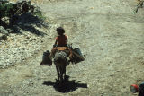 Girl riding donkey carrying canisters of water