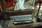 Treadle loom and box of tomatoes