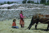 Two girls threshing with a horse